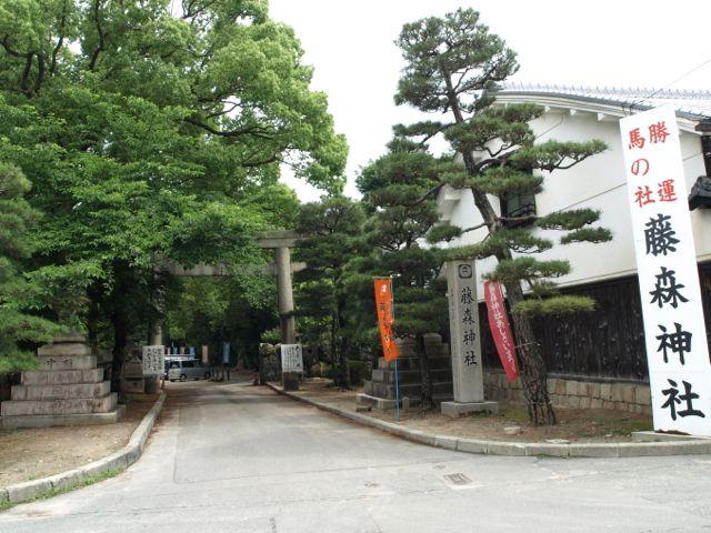 藤森神社の紫陽花(あじさい)1